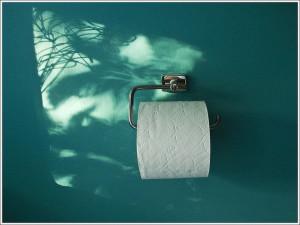 A WC papír nélkülözhetetlen!